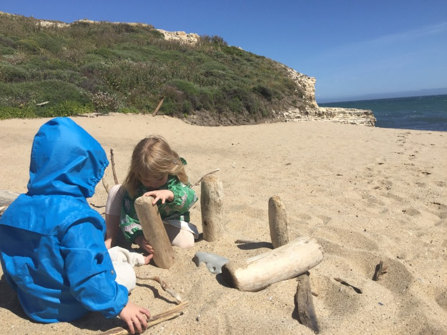 Building with driftwood