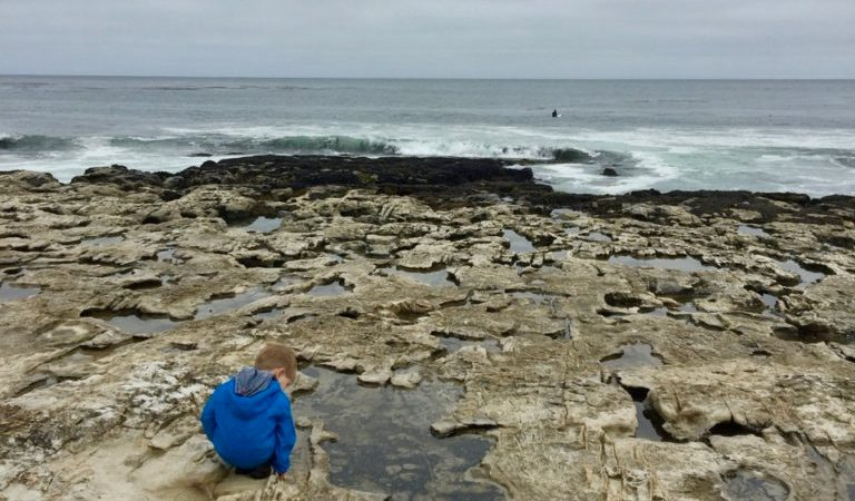 K with the tide pools