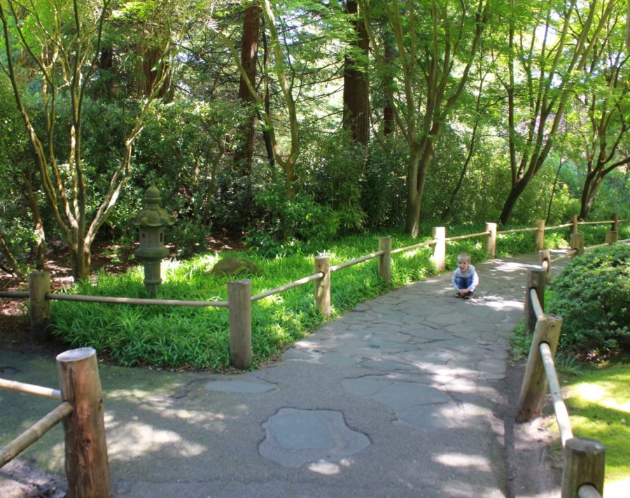 Japanese Tea Garden Path
