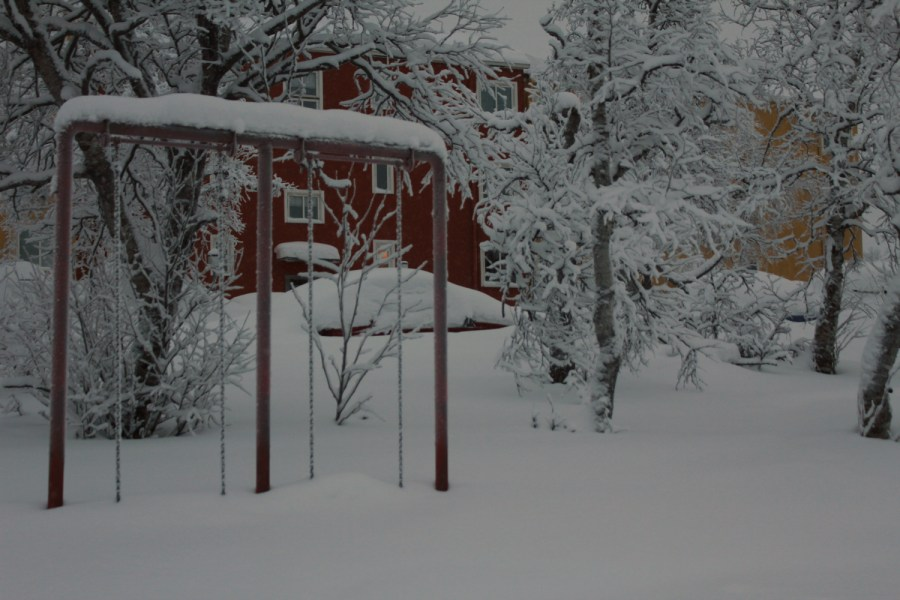Swings in the snow