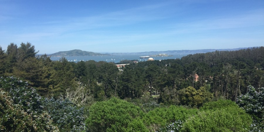 San Francisco View from the Presidio