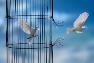 surmonter sa peur experiences stimulantes