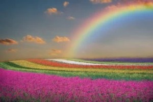 瞑想と天国