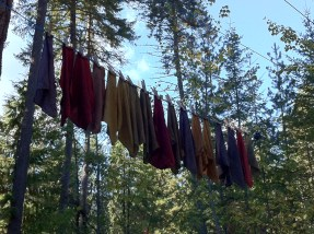 Some napkins hung out to dry