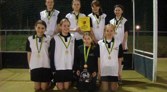 Norwich City Mini Tournament
