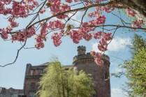 Black and Gold Wedding at Dalhousie Castle Scotland