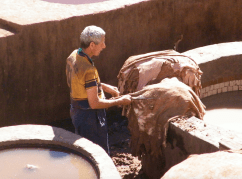 working with the hides