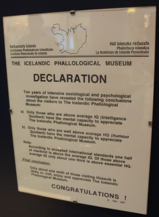 "The Icelandic Phallological ""Penis"" Museum in Downtown Reykjavik"
