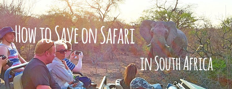 How to Save Money on Safari in South Africa - 3 tips for a luxury safari on a backpacker budget.