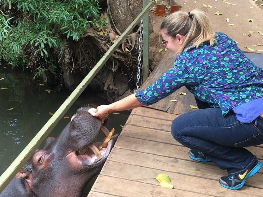 Meet Jessica, the friendliest hippo in South Africa