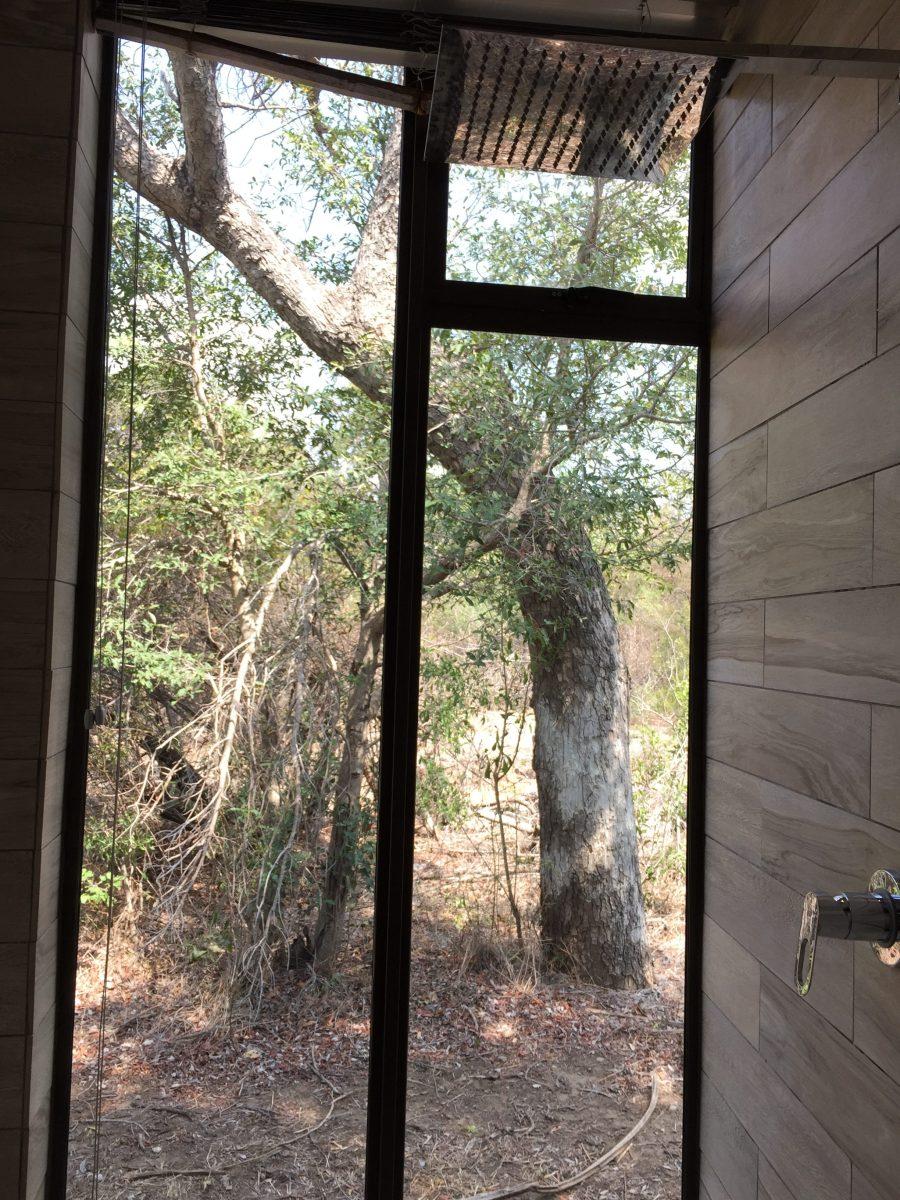 Gorgeous rooms at the Moditlo Lodge in Hoedspruit, South Africa just outside of Kruger National Park