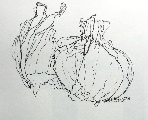 garlic in fibre-tipped pen