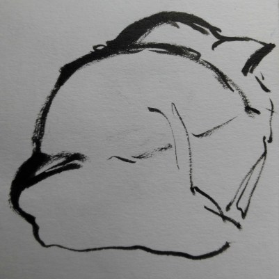 ~ Sleeping cat in brush pen