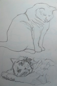 ~ Cats in pencil