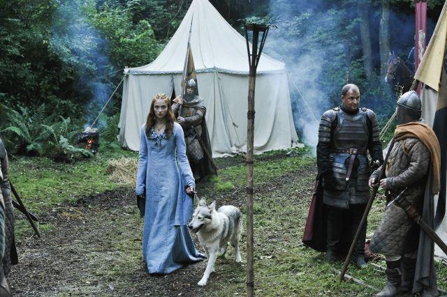 Sansa Stark 'ın Kurdu - Lady