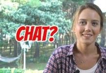 Chat-Nedir