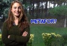 Metafor-Nedir