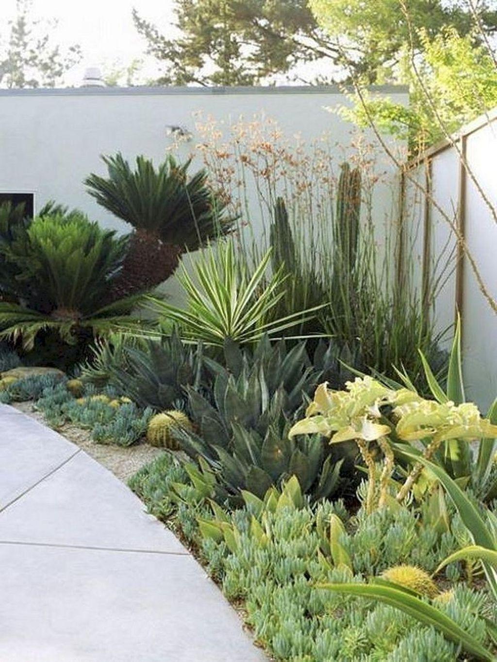Incredible Cactus Garden Landscaping Ideas Best For Summer 03