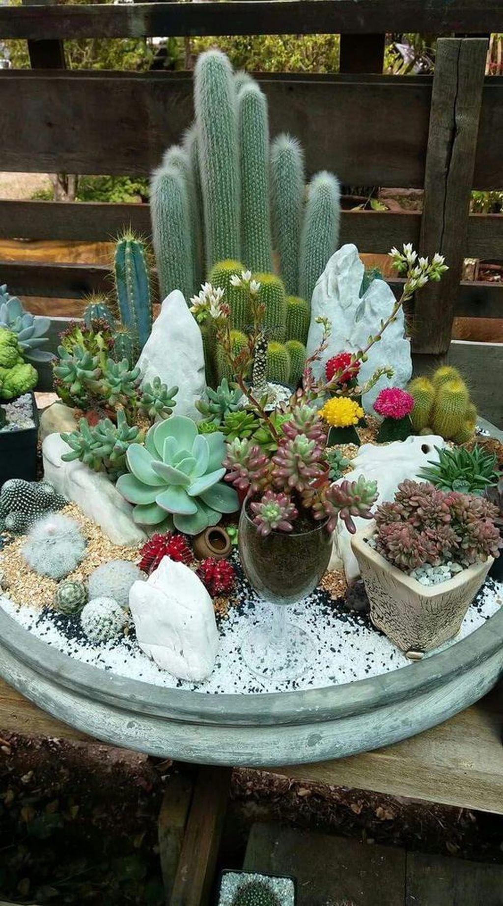 Incredible Cactus Garden Landscaping Ideas Best For Summer 15