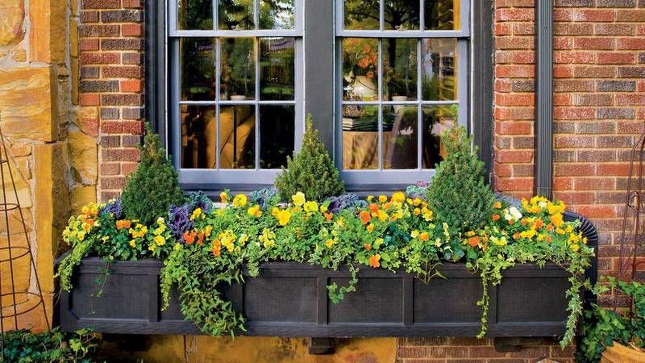 Beautiful Fall Window Boxes Design Ideas 04
