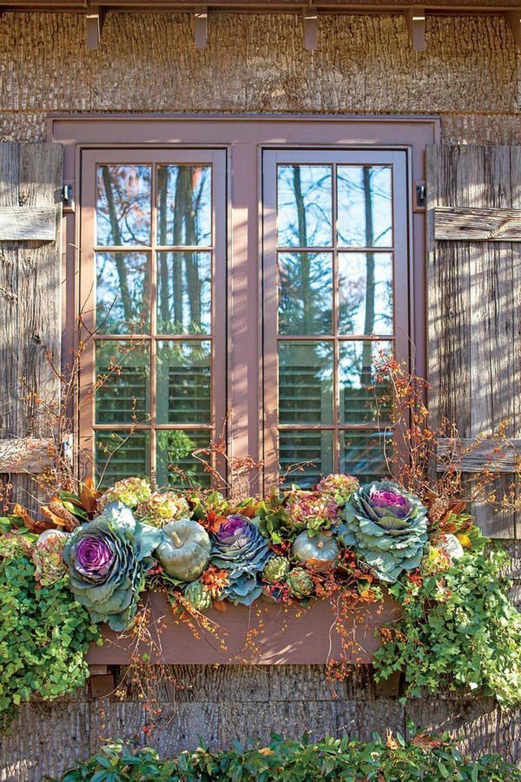 Beautiful Fall Window Boxes Design Ideas 09