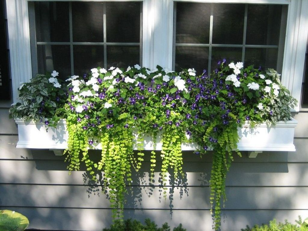Beautiful Fall Window Boxes Design Ideas 19