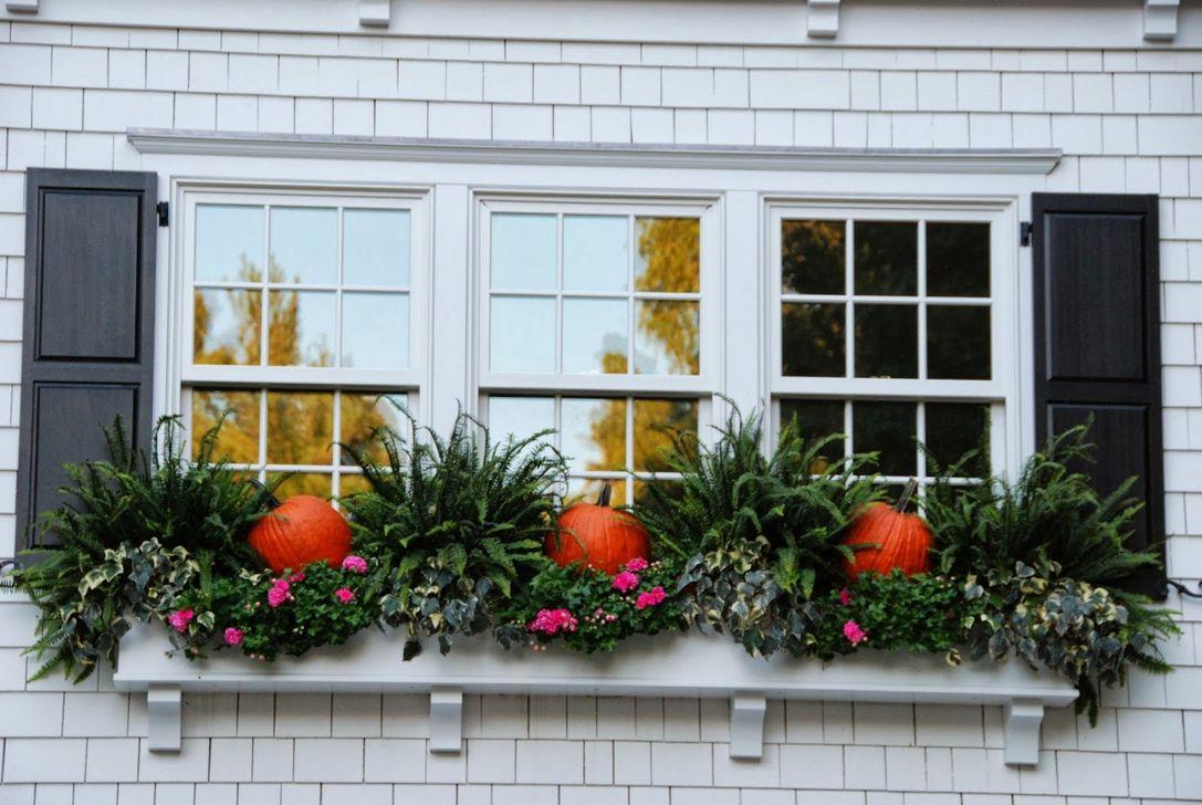 Beautiful Fall Window Boxes Design Ideas 20