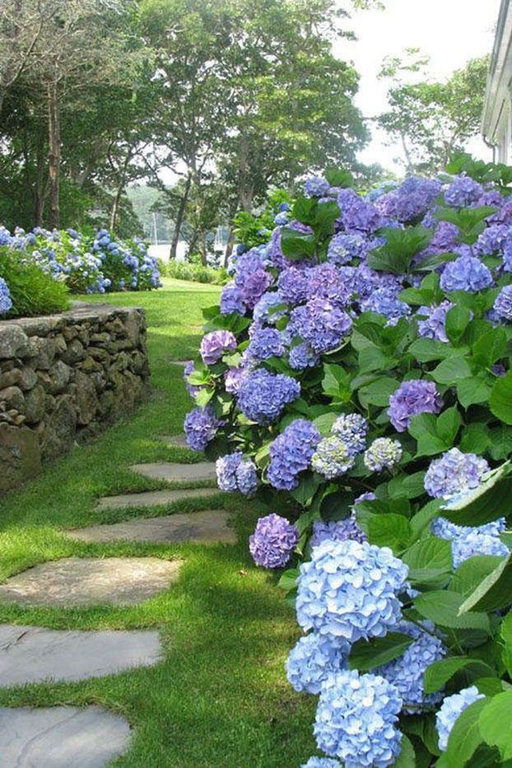 Beautiful Hydrangea Design Ideas Landscaping Your Front Yard 23