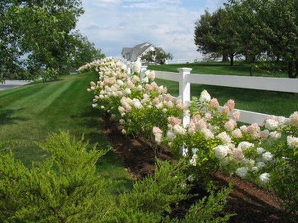 Beautiful Hydrangea Design Ideas Landscaping Your Front Yard 28