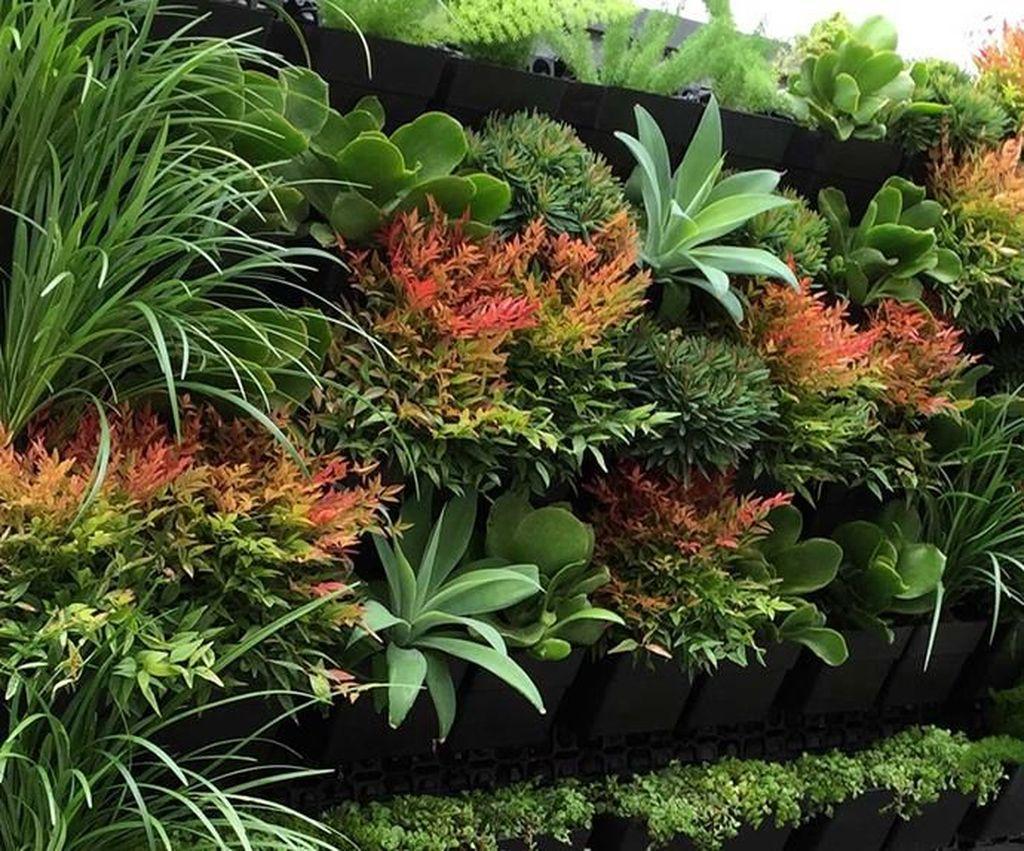 Gorgeous Vertical Garden Ideas Wall Decor 16
