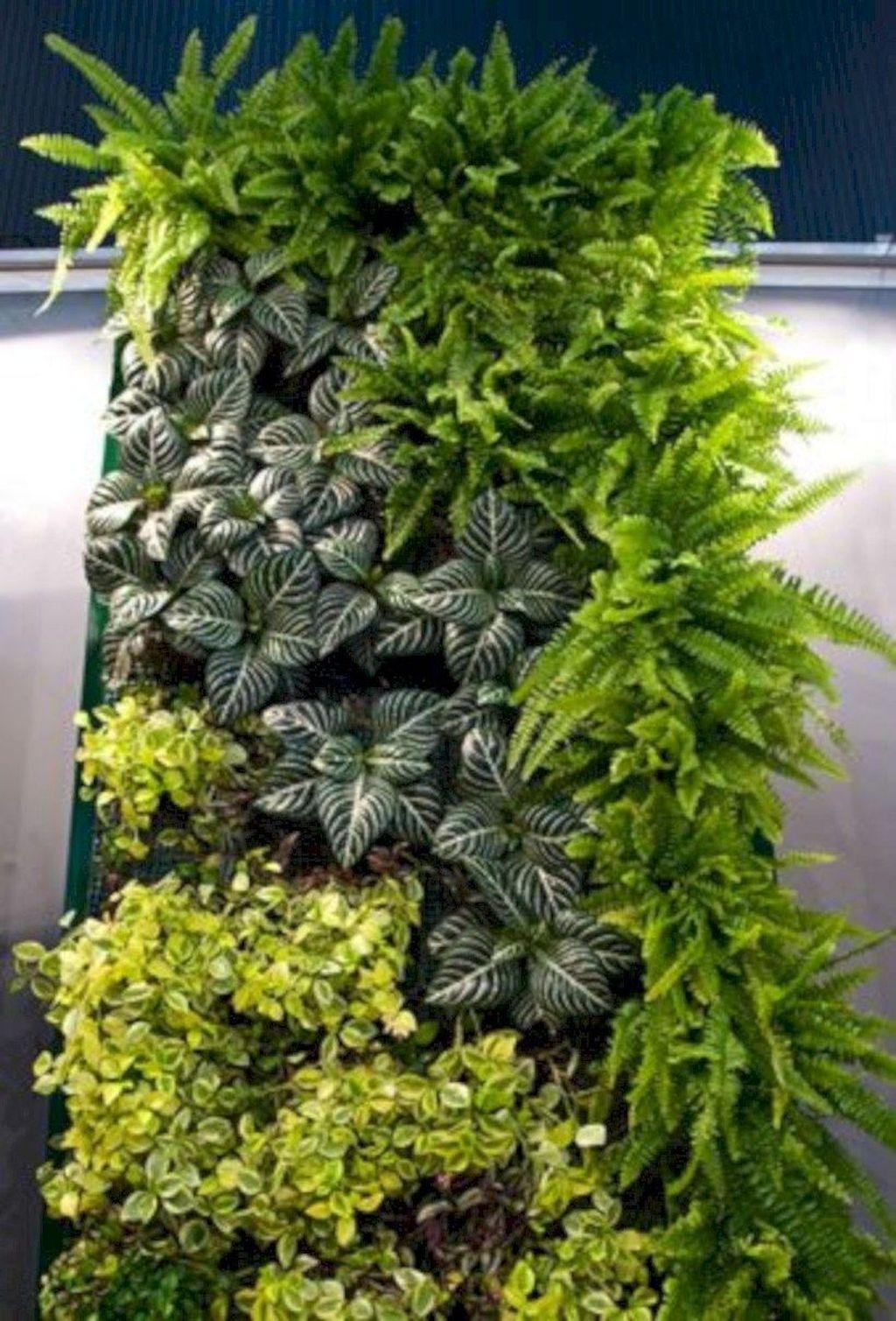 Gorgeous Vertical Garden Ideas Wall Decor 24