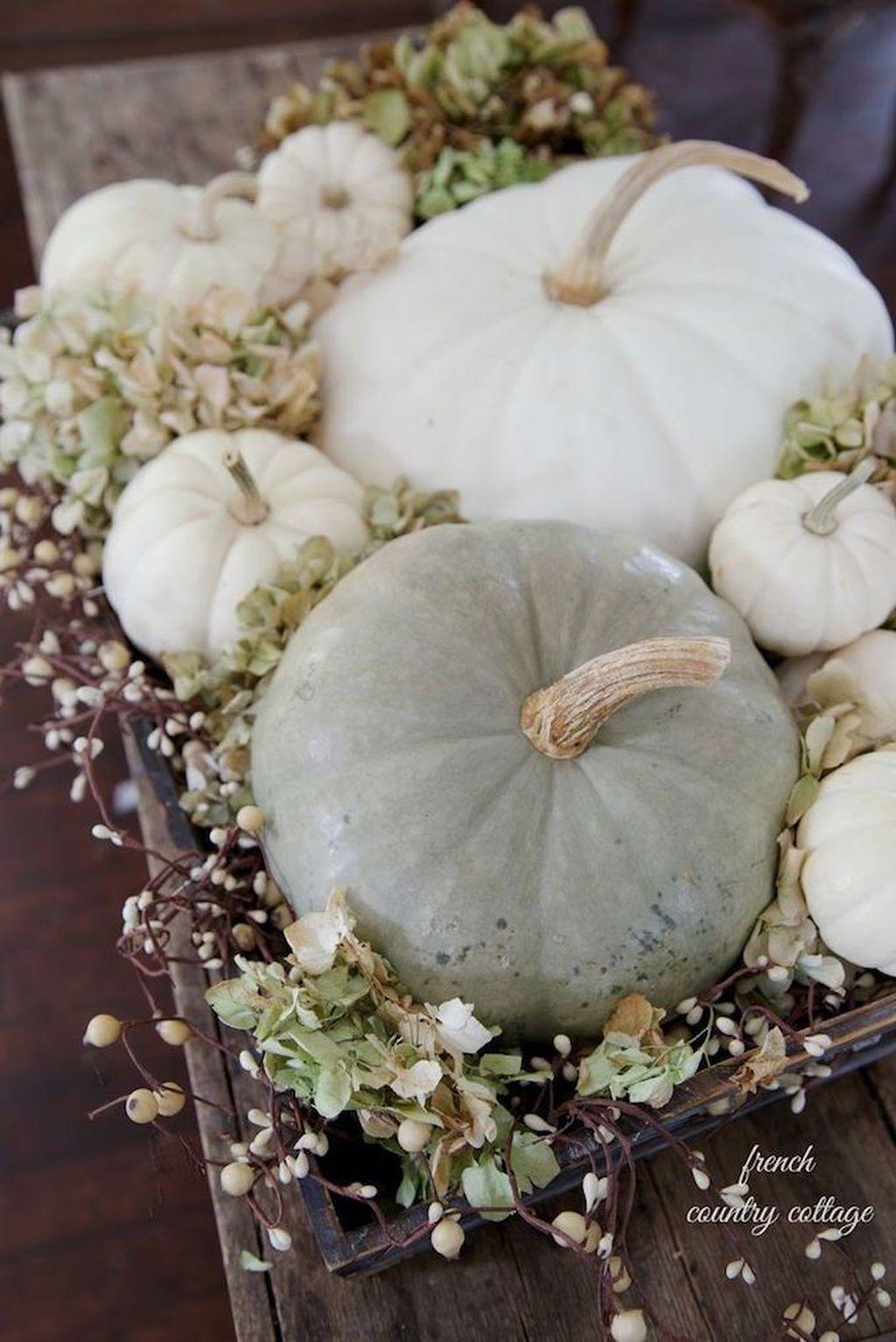 Lovely Fall Pumpkin Decor Ideas 30