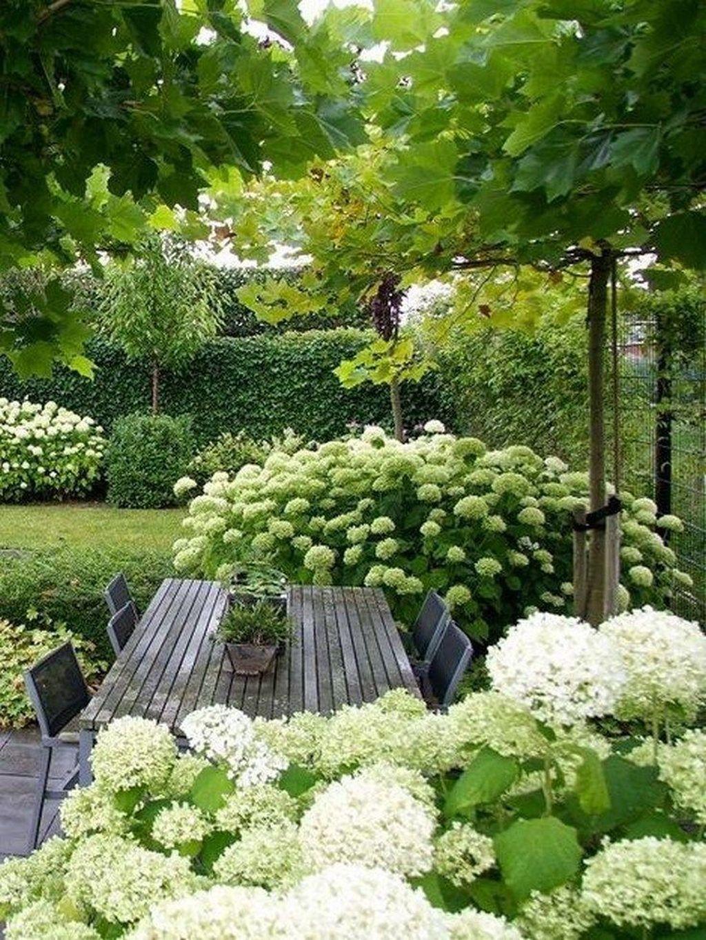 Lovely Tropical Garden Design Ideas 11