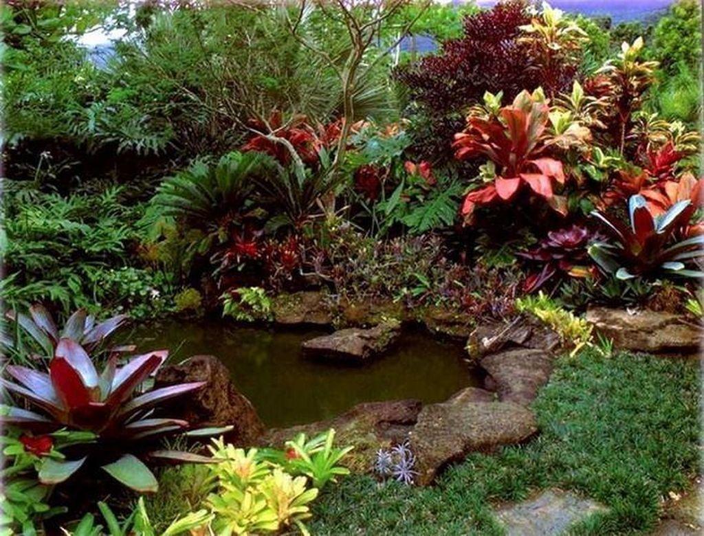 Lovely Tropical Garden Design Ideas 16