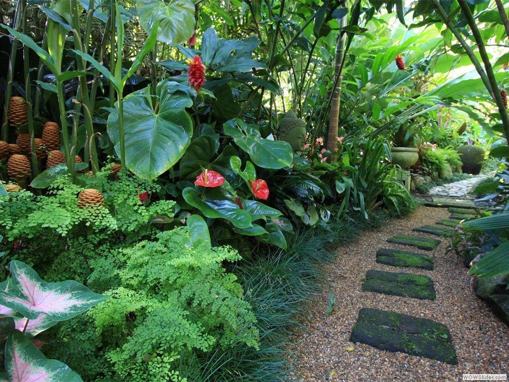 Lovely Tropical Garden Design Ideas 19