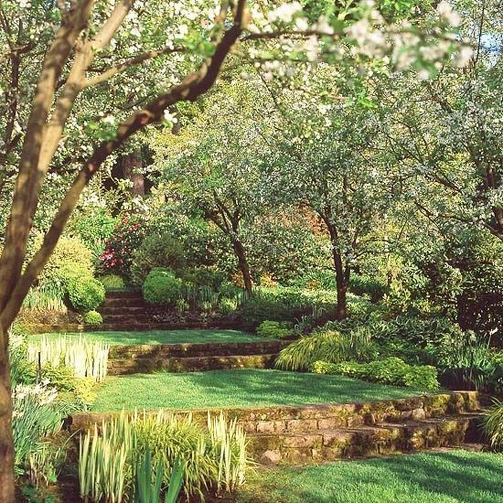 Popular Terraced Landscaping Slope Yard Design Ideas 20