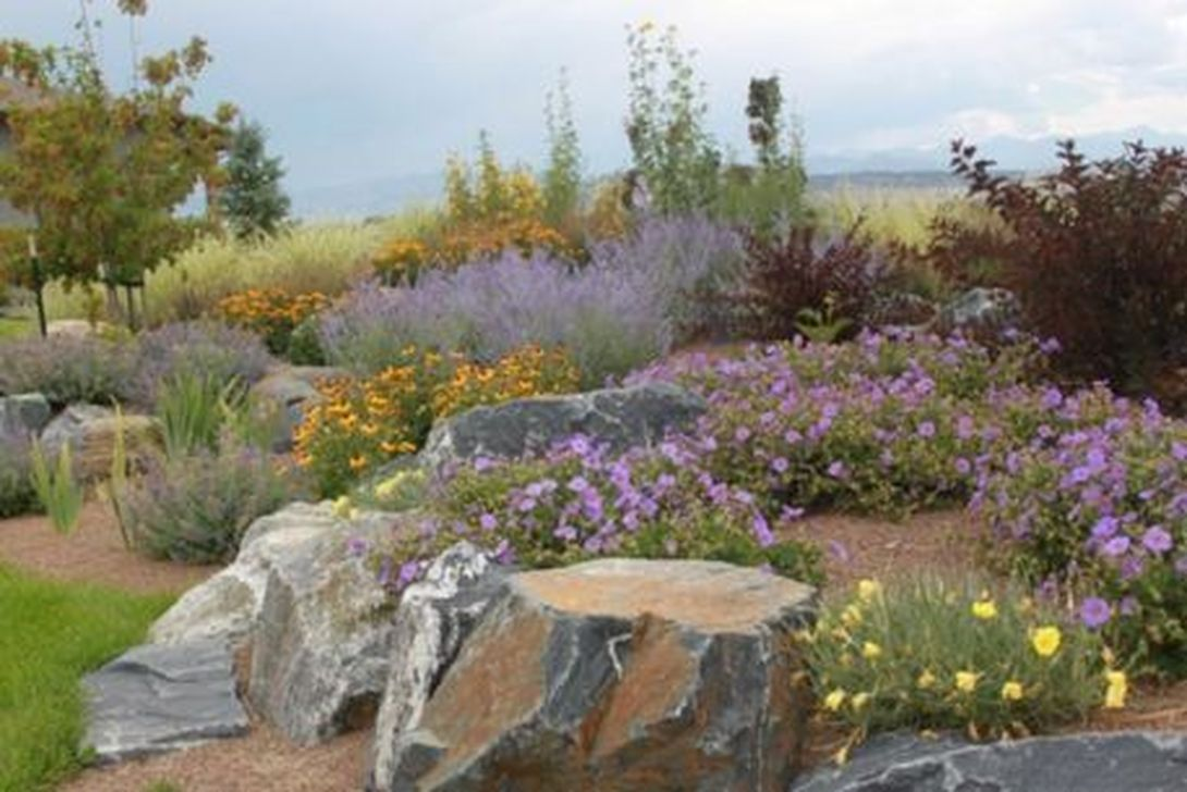 Popular Xeriscape Landscape Ideas For Your Front Yard 32