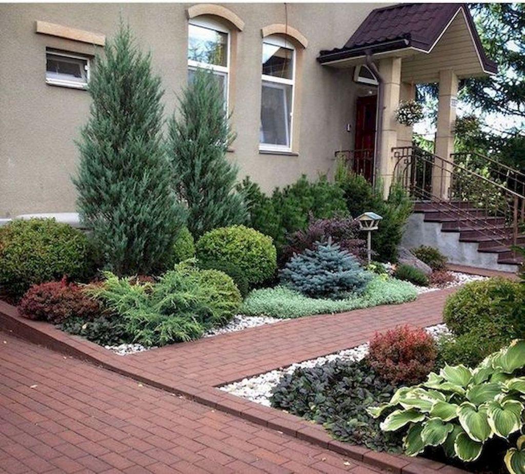 Wonderful Evergreen Landscape Ideas For Front Yard 04