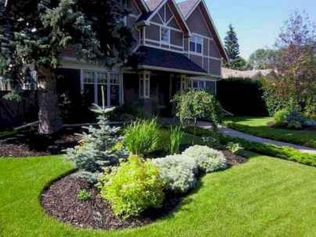 Wonderful Evergreen Landscape Ideas For Front Yard 05