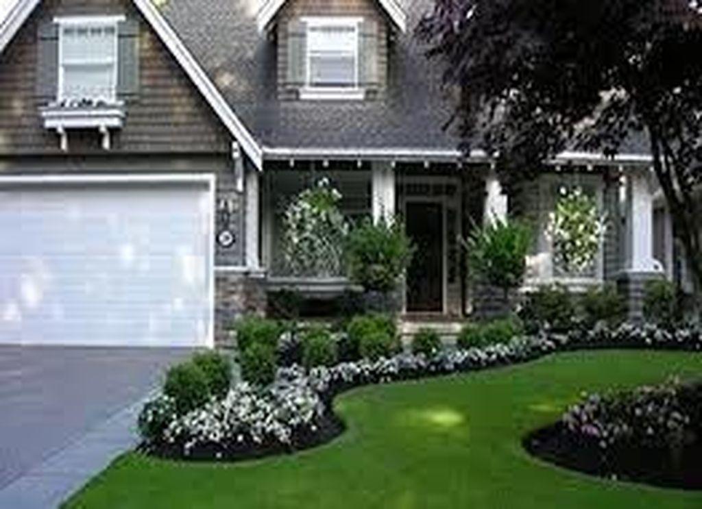 Wonderful Evergreen Landscape Ideas For Front Yard 07