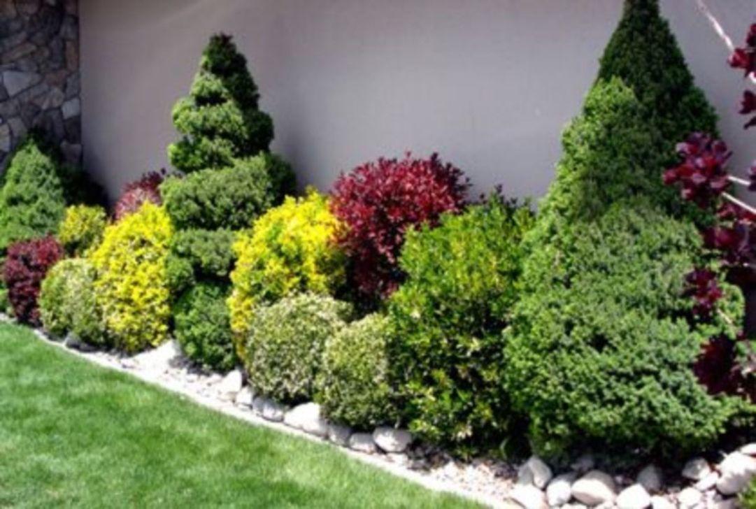 Wonderful Evergreen Landscape Ideas For Front Yard 15