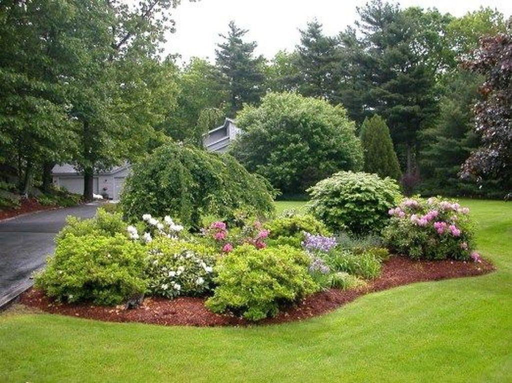 Wonderful Evergreen Landscape Ideas For Front Yard 19