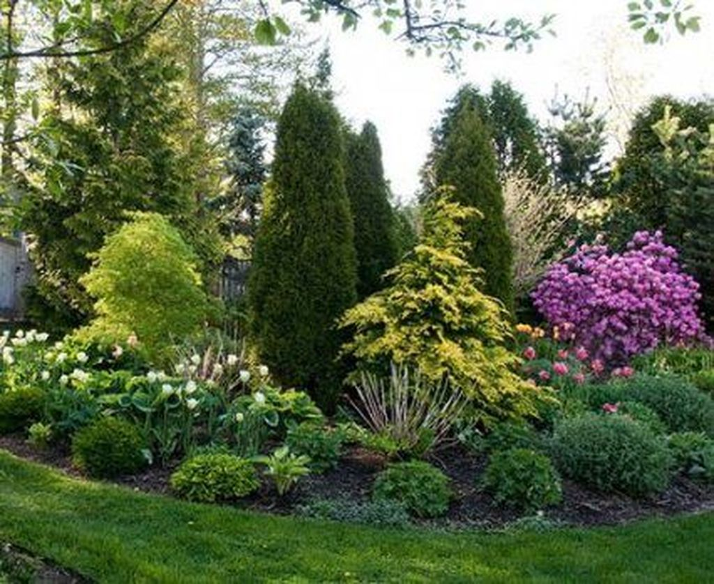 Wonderful Evergreen Landscape Ideas For Front Yard 20