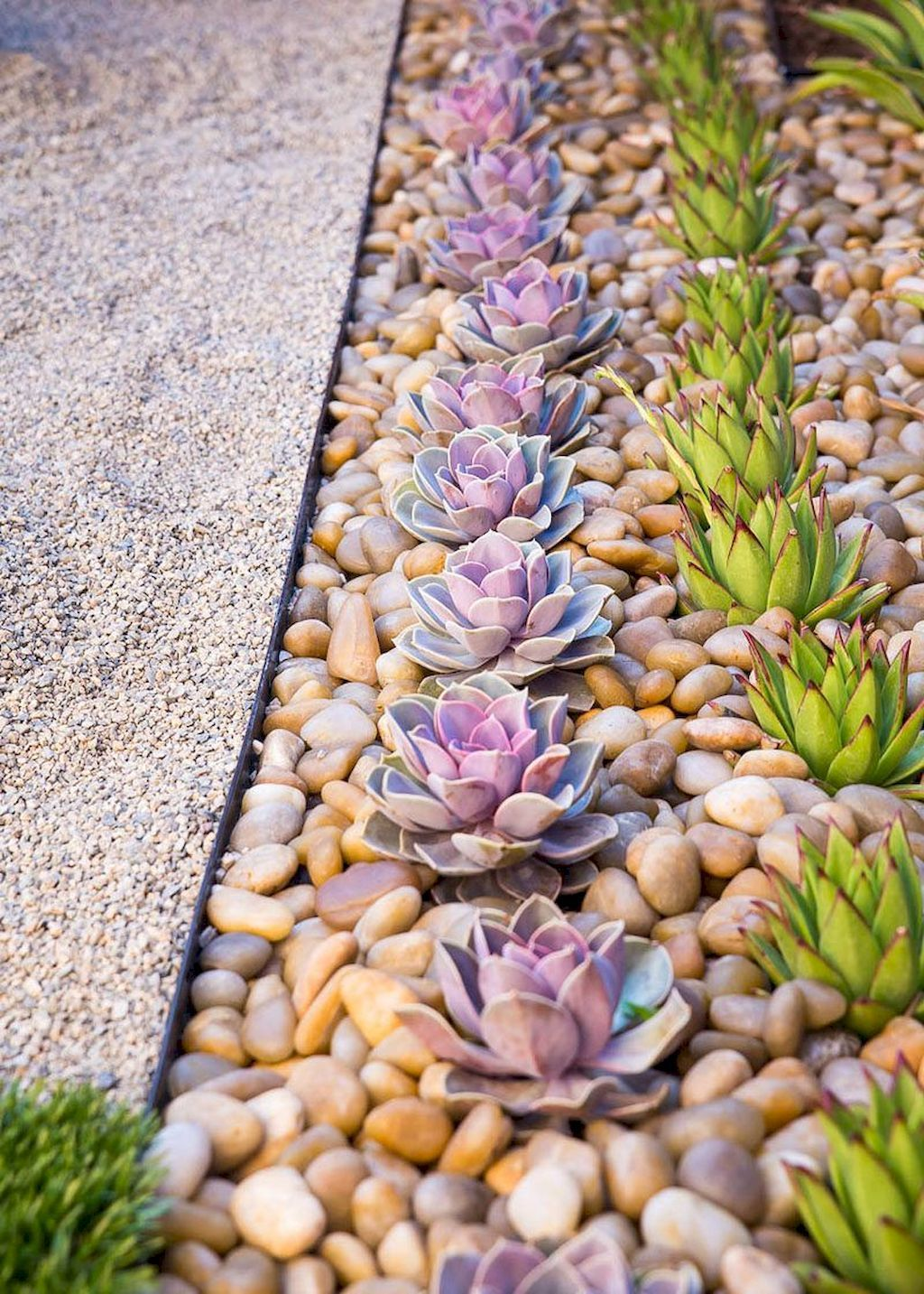 Awesome Succulent Front Yard Landscaping Ideas 07