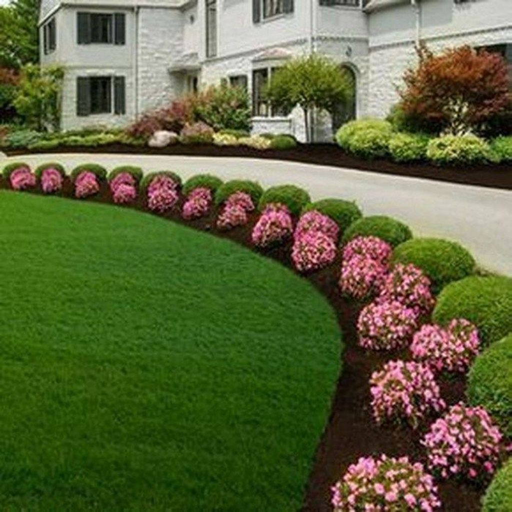 Awesome Succulent Front Yard Landscaping Ideas 11