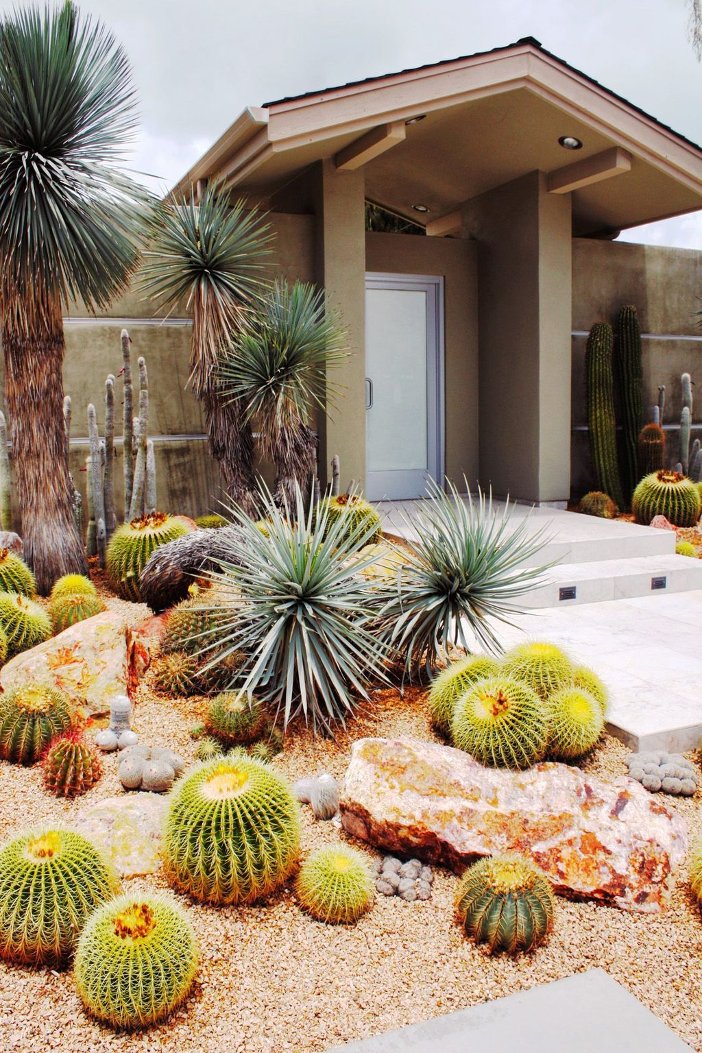 Beautiful Cactus Landscaping Ideas For Your Front Yards Decor 26