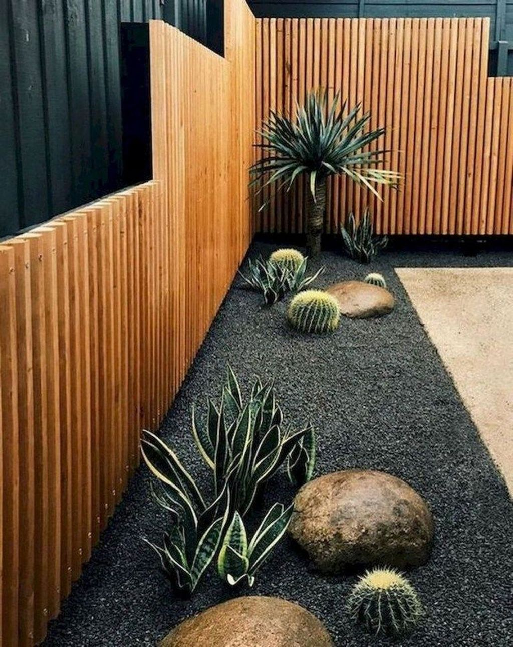 Beautiful Cactus Landscaping Ideas For Your Front Yards Decor 29