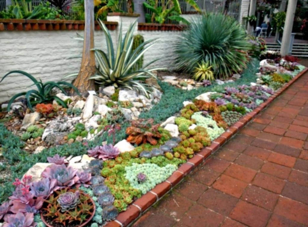 Beautiful Cactus Landscaping Ideas For Your Front Yards Decor 30