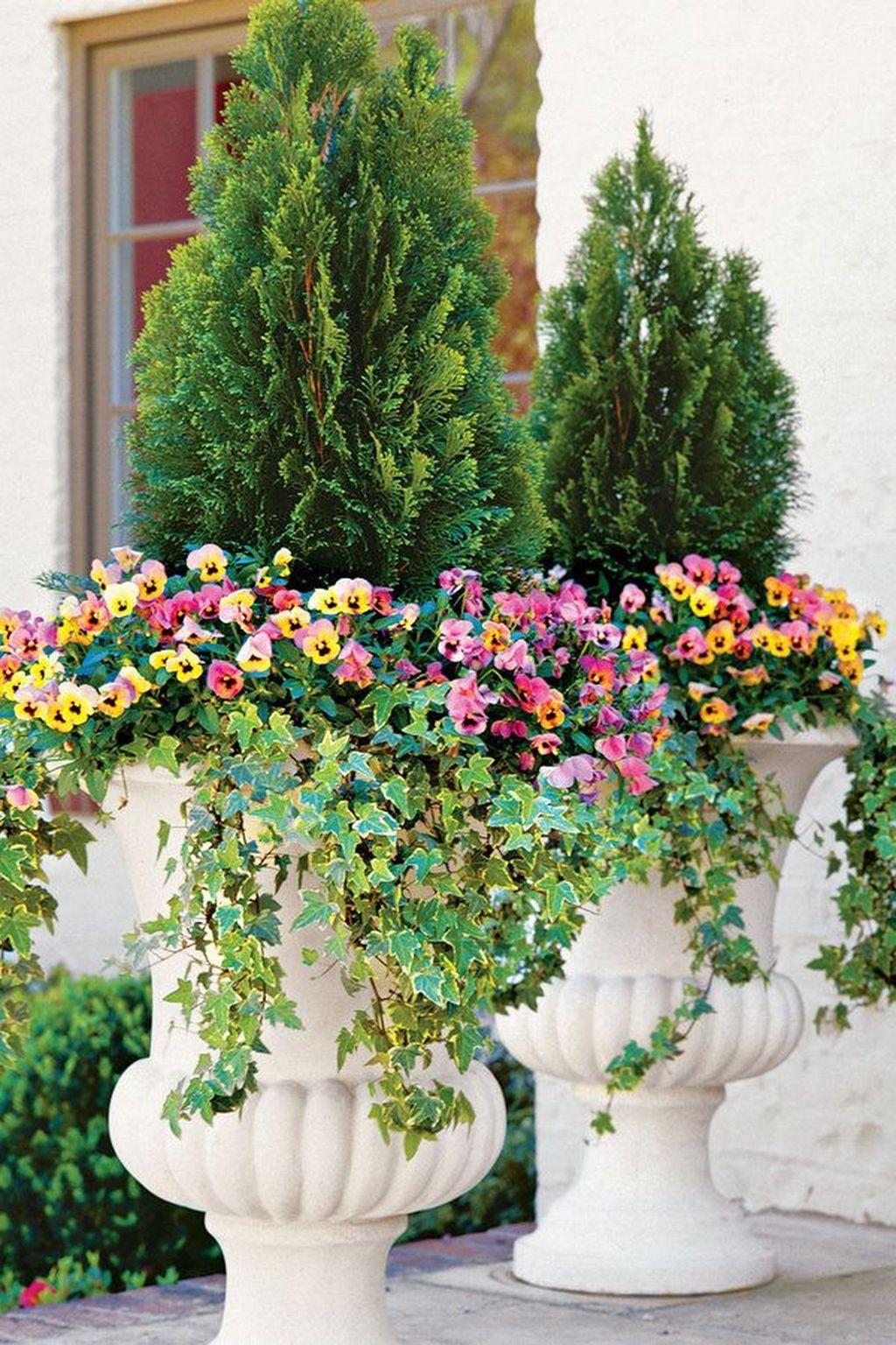 Inspiring Winter Container Gardening Ideas 03