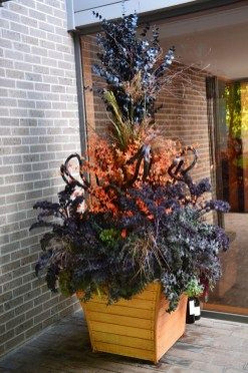 Inspiring Winter Container Gardening Ideas 15